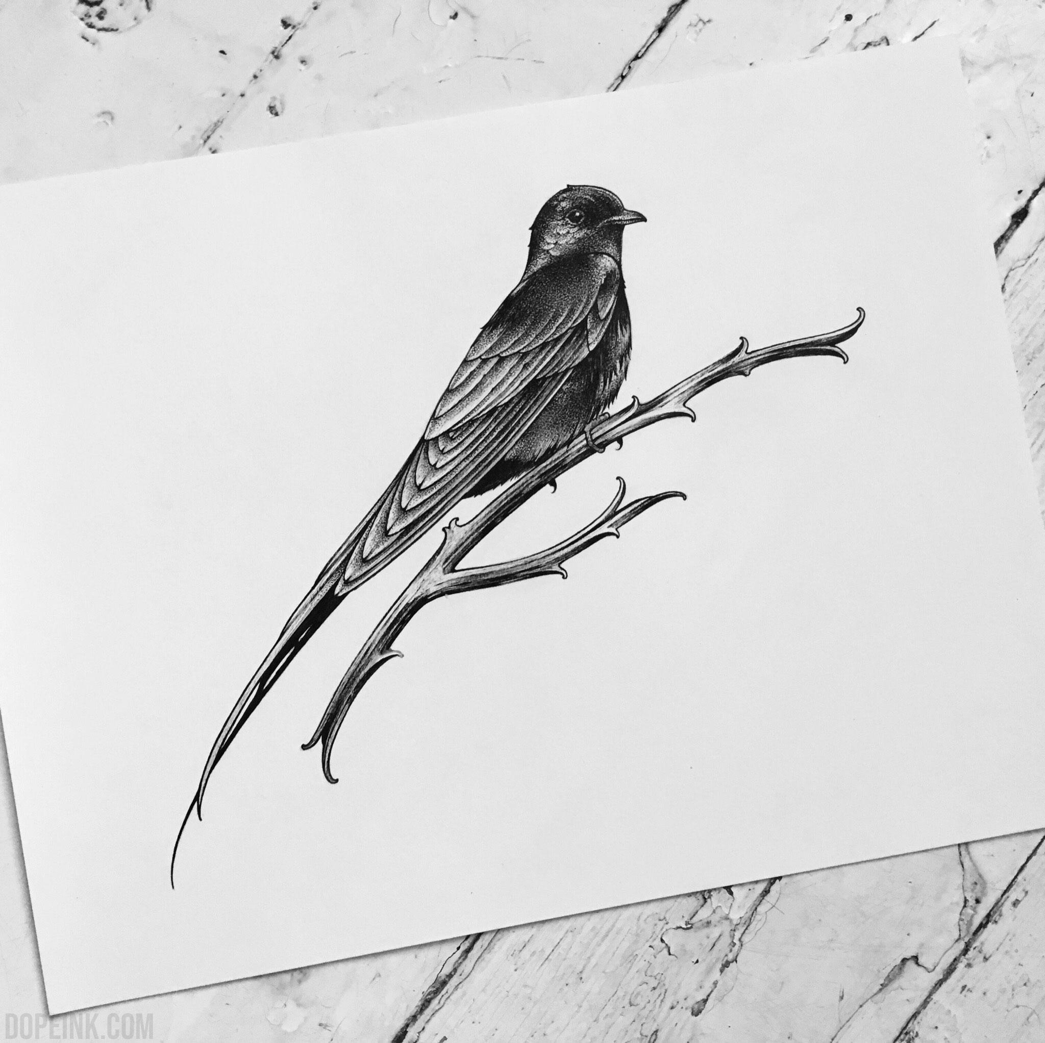 Эскиз татуировки птица графика